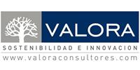 Valora Consultores